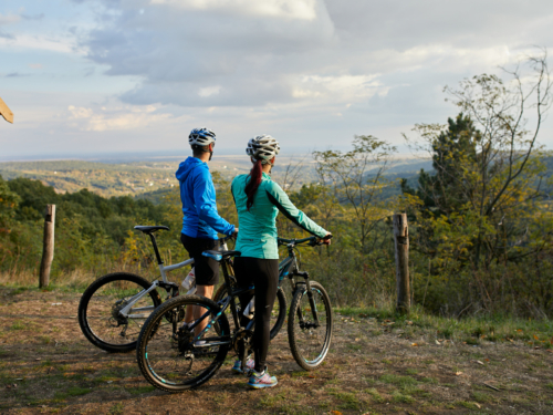 Half Day Mountain Bike Tours
