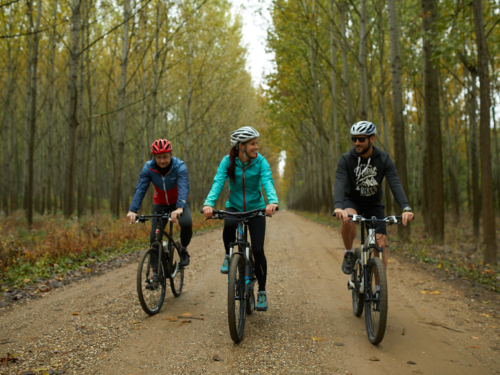 Full Day Mountain Bike Tours
